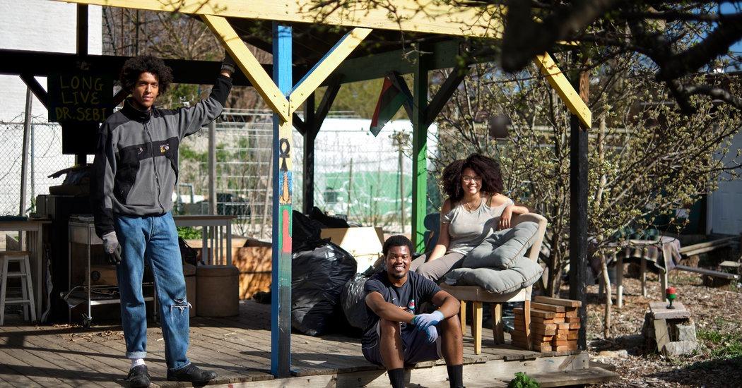 Les jardins communautaires s'adaptent à la pandémie  – Caisses en bois – Caisses à Pommes