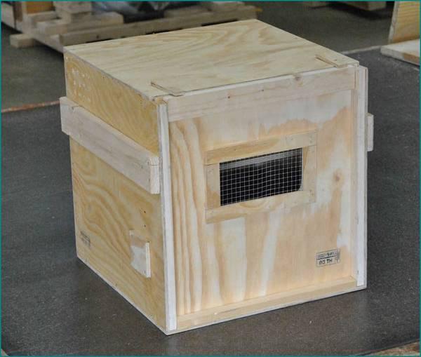 Acheter Caisse de vin en bois que faire pour caisse en bois xxl offre
