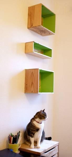 Acheter Caisse en bois 50 x 30 : caisse en bois zelda awakening promotion